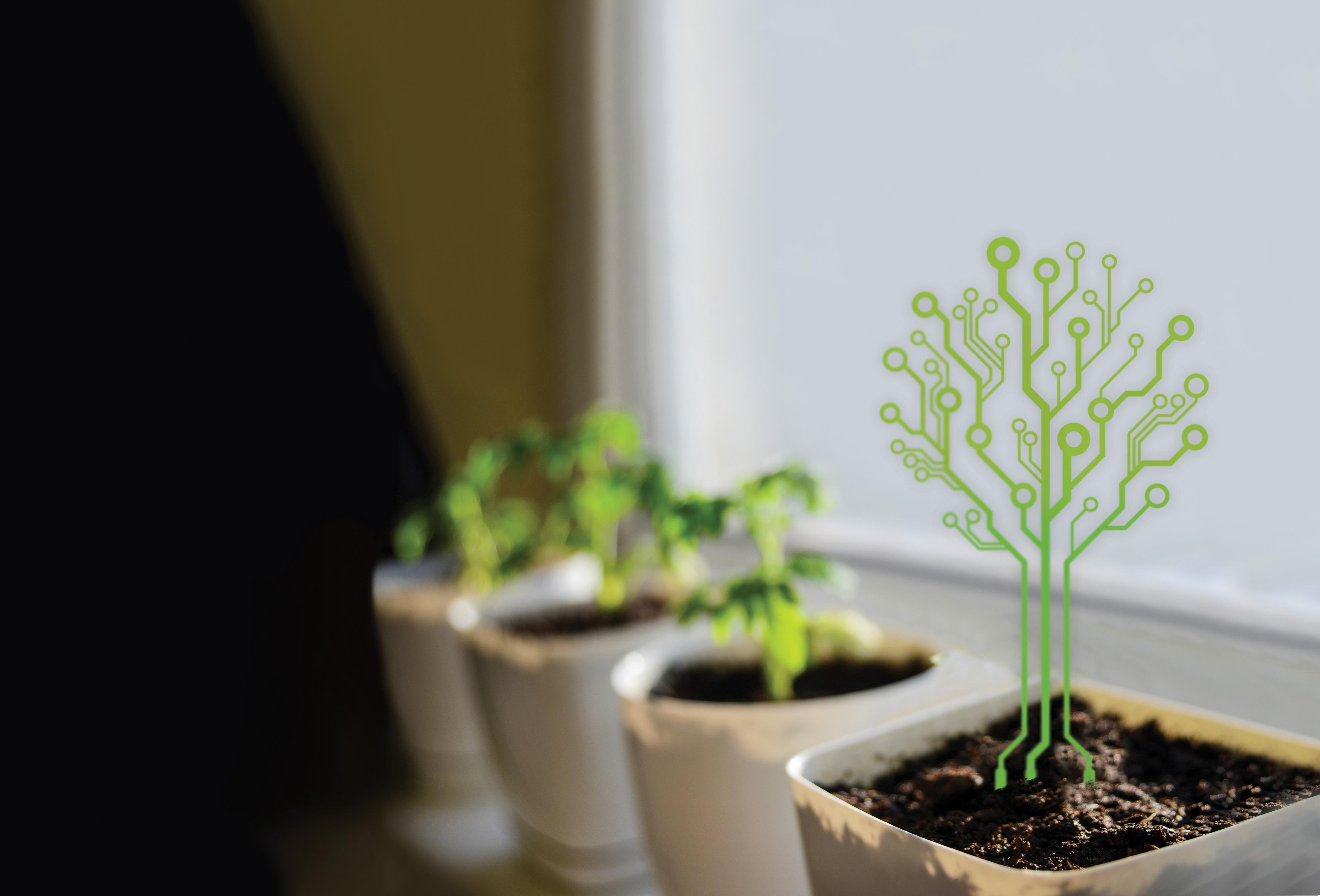 elektrooniline taim_crop